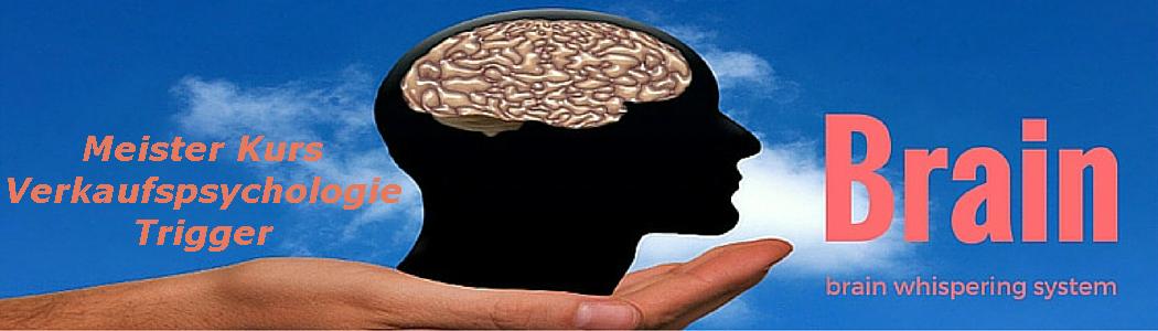 brain whispering system
